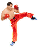 Muay thai trainer executing a kick Royalty Free Stock Images