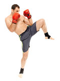 Muay thai trainer executing a kick Royalty Free Stock Image