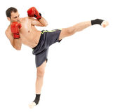 Muay thai trainer executing a kick. Kickbox or muay thai instructor executing a kick, isolated on white background Stock Photography