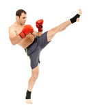 Muay thai trainer executing a kick Royalty Free Stock Photography
