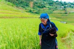 MUCANGCHAI VIETNAM, September 29, 2018: Kvinnor Hmong för etnisk minoritet i Mu Cang Chai, Yen Bai arkivfoton