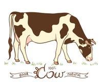 Mucca che mangia erba illustrazione di stock
