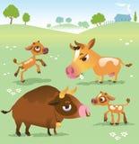 Mucca del fumetto messa: mucche, toro e toro del vitello Immagini Stock Libere da Diritti