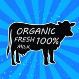 Mucca disegnata a mano dell'animale da allevamento Iscrizione fresca organica del latte Illustrazione Fotografia Stock Libera da Diritti