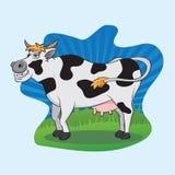 Mucca divertente Immagini Stock Libere da Diritti