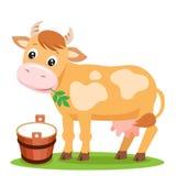 Mucca e latte svegli su un fondo bianco Fotografie Stock Libere da Diritti