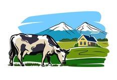 Mucca ed azienda agricola Fotografie Stock Libere da Diritti