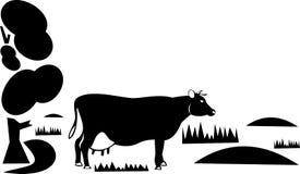 Mucca su un pascolo Fotografia Stock