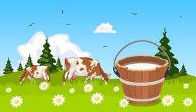 Mucca sulla benna del prato di latte Fotografia Stock
