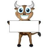 Mucca sveglia che tiene un segno in bianco Fotografia Stock