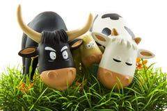Mucche che mangiano erba Fotografia Stock