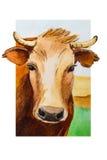 Mucche della pittura dell'acquerello Fotografia Stock Libera da Diritti