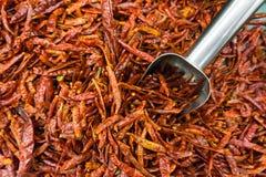 Mucchi dei peperoncini rossi rossi secchi con il merlo acquaiolo di alluminio nel mA eccellente Fotografia Stock