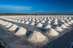 Mucchi del sale in cielo blu di sotto salino Immagine Stock Libera da Diritti