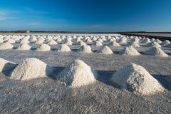 Mucchi del sale in cielo blu di sotto salino Fotografia Stock Libera da Diritti