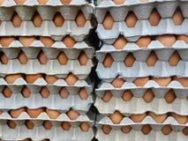 Mucchi delle uova in cartoni Fotografie Stock Libere da Diritti
