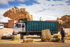 Mucchi di fieno di caricamento su un camion Skoura morocco Immagini Stock Libere da Diritti