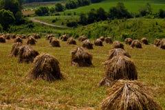 Mucchi di fieno del paese Fotografia Stock Libera da Diritti