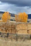 Mucchi di fieno della valle di Nicola, Columbia Britannica verticale Fotografia Stock Libera da Diritti