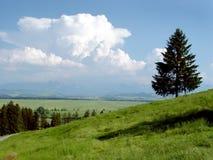 Mucchi di fieno nelle montagne di estate Immagini Stock Libere da Diritti