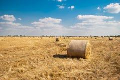 Mucchi di fieno rotondi su un campo di paglia, un giorno di estate soleggiato, contro un fondo del cielo e degli alberi Fotografie Stock Libere da Diritti