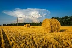 Mucchi di fieno in un campo rurale in autunno con la nuvola, Russia, Ural, settembre Immagini Stock Libere da Diritti