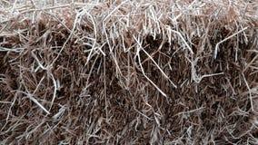 Mucchi di paglia, dettaglio di paglia accatastata per alimentazione animale Fotografia Stock