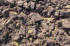 Mucchi di terra arata scura bagnata Fotografie Stock
