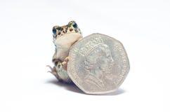 Mucchi di varie monete e della rana pazzesca Fotografia Stock