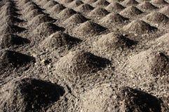 Mucchi a terra coltivati della terra di suolo Immagine Stock Libera da Diritti