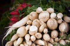 Mucchio bianco dei ravanelli in un mercato Fotografia Stock