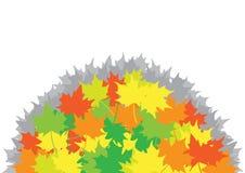 Mucchio dalle foglie di acero Immagini Stock