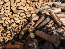 Mucchio dei ceppi di legno Fotografia Stock Libera da Diritti