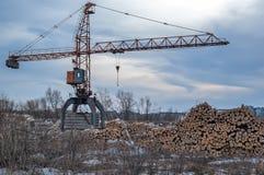 Mucchio dei ceppi di legno con la gru Tjumen' La Russia Fotografia Stock