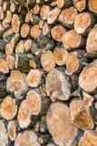 Mucchio dei ceppi di legno pronti per l'inverno Fotografia Stock Libera da Diritti