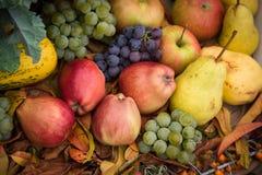Mucchio dei frutti variopinti freschi di autunno fotografia stock libera da diritti