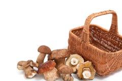 Mucchio dei funghi e del canestro di vimini Fotografia Stock