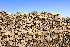 Mucchio dei libri macchina del legname Fotografie Stock Libere da Diritti