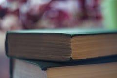 Mucchio dei libri verdi Il concetto di lettura Primo piano dei gatti sul fondo di pendenza con il riverbero Fuoco selettivo fotografia stock libera da diritti