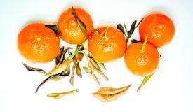 Mucchio dei mandarini maturi freschi con i piccoli ramoscelli e foglie verdi su un fondo leggero Immagini Stock