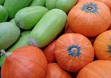 Mucchio dei meloni di inverno verde chiaro e delle zucche arancio vibranti di colore Fotografia Stock