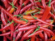 Mucchio dei peperoncini rossi Immagine Stock