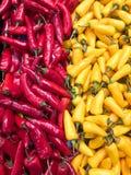 Mucchio dei peperoncini rossi rossi e gialli Immagini Stock