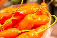 Mucchio dei peperoncini rossi rossi freschi al mercato Immagine Stock