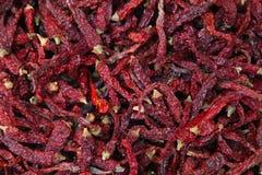 Mucchio dei peperoncini rossi secchi Fotografia Stock Libera da Diritti