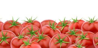Mucchio dei pomodori, modello senza cuciture orizzontale Fotografie Stock Libere da Diritti