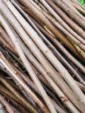 Mucchio dei rami Fotografia Stock