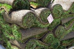 Mucchio dei rulli dell'erba Immagine Stock Libera da Diritti