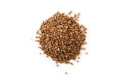 Mucchio dei semi del grano saraceno Fotografia Stock Libera da Diritti