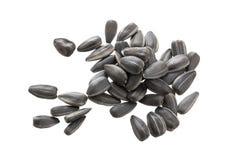 Mucchio dei semi di girasole isolati su bianco fotografia stock